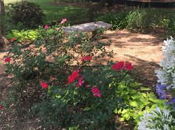 Bennet Garden