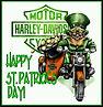 Irish Rider.jpg