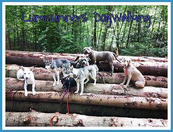 PicsArt_07-13-02.26.06.jpg