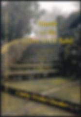 bookcoverlg1.jpg