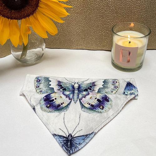 Butterfly Velvet