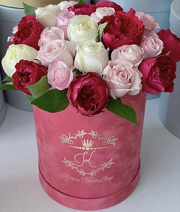 David Austin Roses Box 3