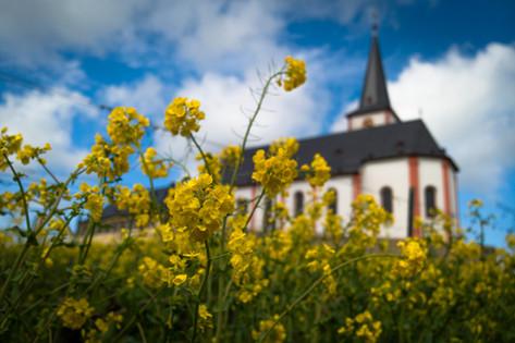Kirche von Hochheim