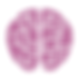 icon brain.png