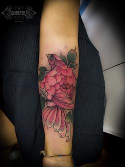 Ave_-_Flor_Rosa[1]