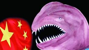 Shame China without naming it?
