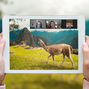 Virtual Tourism - A Viable Alternative to Travel?