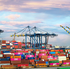Building Supply Chain Resilience for a Post-Covid World
