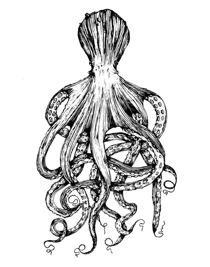 Octopus_Face_Final-01.jpg