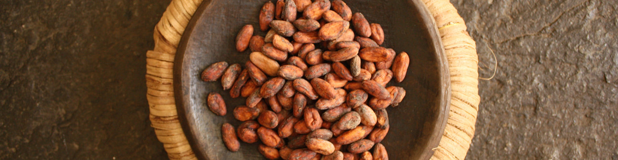 CACAO BEANS FERMENTED