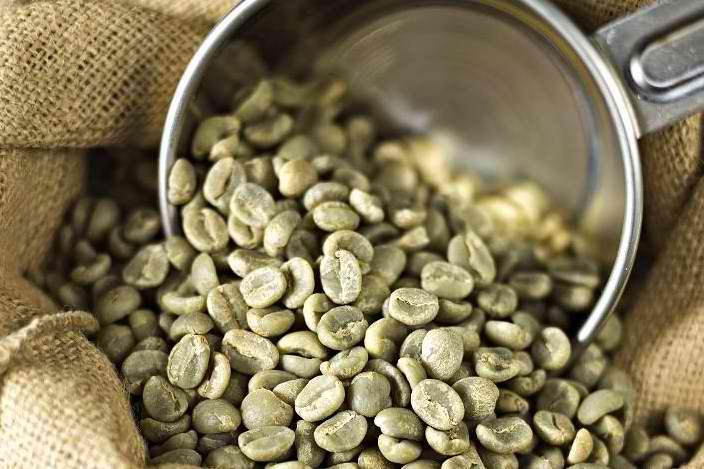 green-coffee-bean-in-ariix-rejuveniix