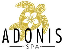 Adonis_Spa_Logo_Small-01_edited.jpg