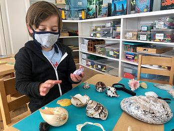 Seashell sensory play