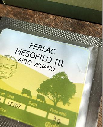 Vegan cheese starter culture#3 (Mesophilic,Consists of L. lactis en L. cremoris)