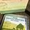 Thumbnail: Blue cheese cultures (Penicillium Roqueforti )