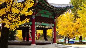 어린이대공원 (3).png