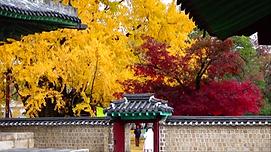 성군관(3).png