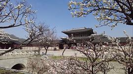 봄꽃과경복궁.png