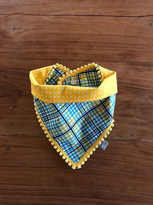 Latz blue & yellow