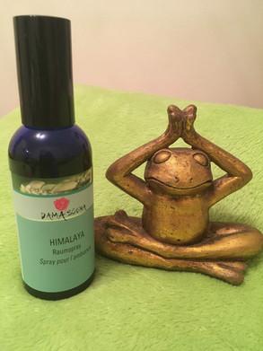 BD Wellness Massagen