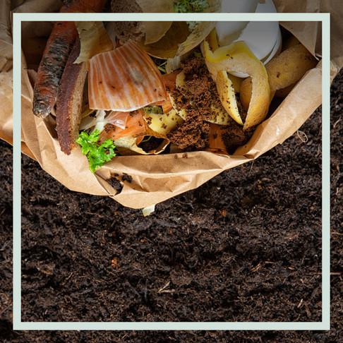 Happy New Composting – 8 Gründe, warum 2021 dein Kompost-Jahr werden sollte