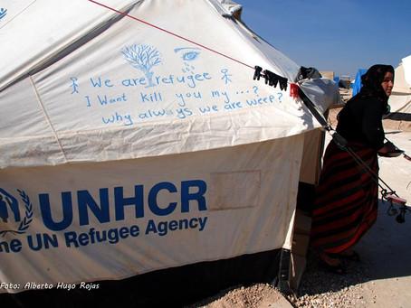 Los refugiados tienen derechos.