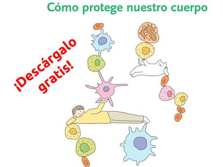 Los Misterios Del Sistema Inmune.