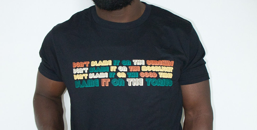 Blame it on the Tories T-shirt
