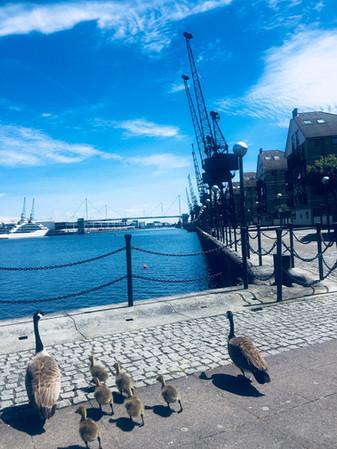 Royal Victoria Docks, Newham