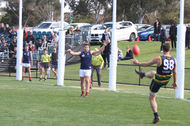 Thirds Gold GF Action
