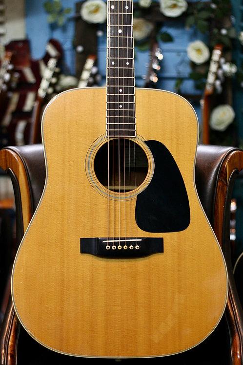Guitar acoustic Takamine TD20