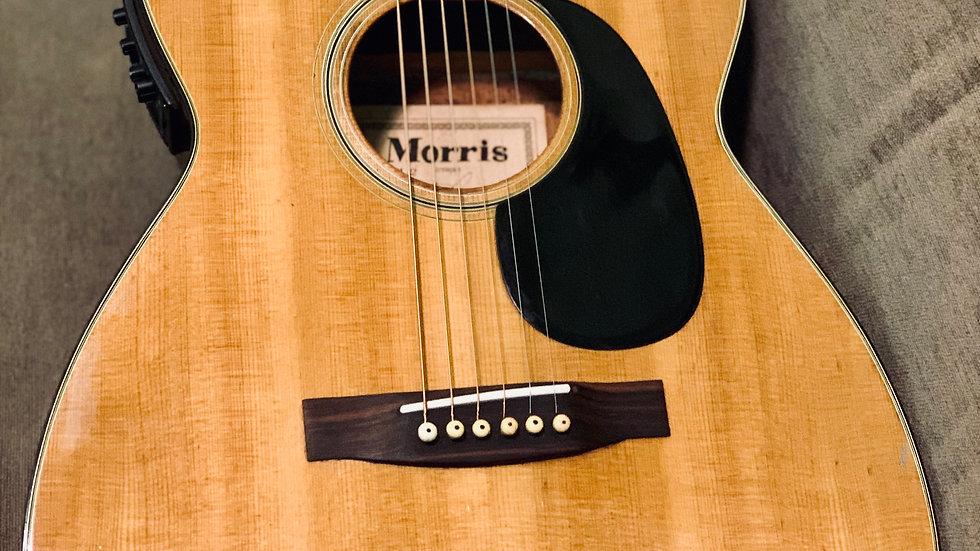 Guitar Morris F12 vintage 1968 + EQ Artec