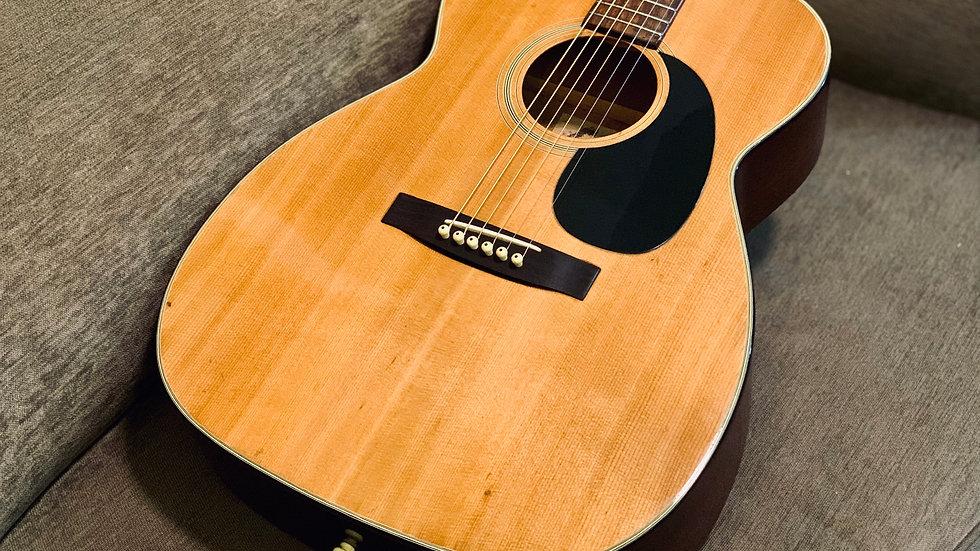 Guitar scoustic Jagard_JF13 dáng A