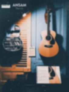 Vintage guitar - guitar Nhật cũ Tphcm.jp