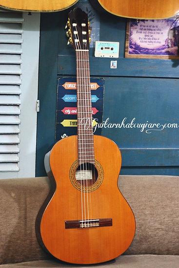 Guitar classic Jose Antonio 6C