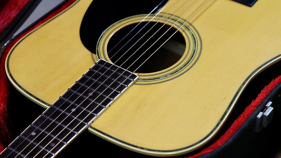 Guitar acoustic Morris W25 1980s .