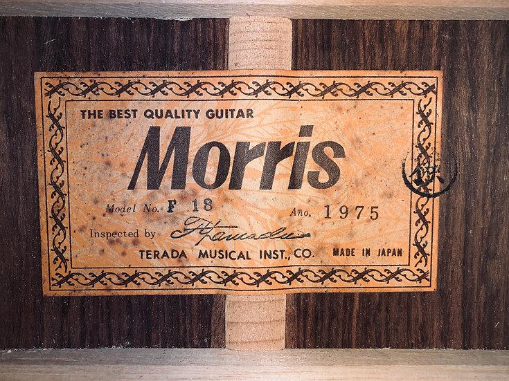 Guitar Folk Morris_F18 Vintage 1975.