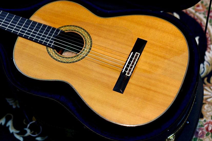 Guitar classic Takamine PT310 + EQ 1980s.