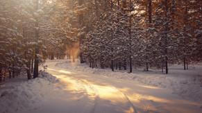 The Corona-Winter-Blues