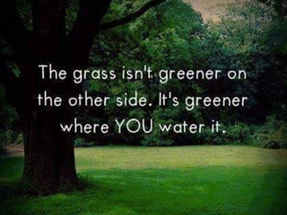 Vergelijken: The grass isn't greener on the other side, it's greener where you water it.