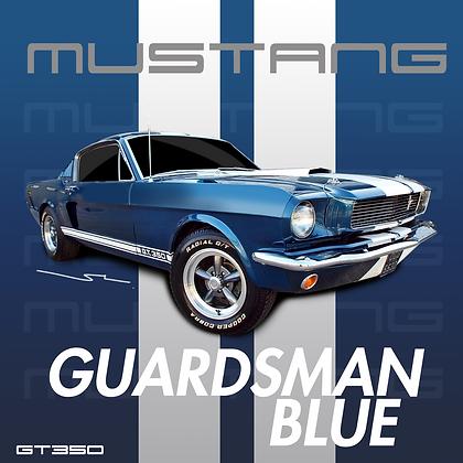 Ford Guardsmen Blue