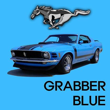 Ford Grabber Blue