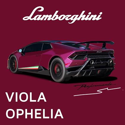 Lamborghini Viola Ophelia