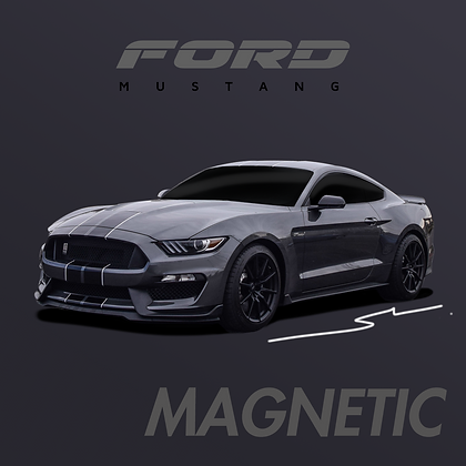 Ford Magnetic