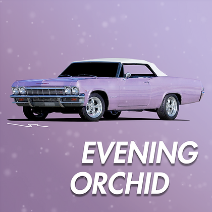 Chevrolet Evening Orchid