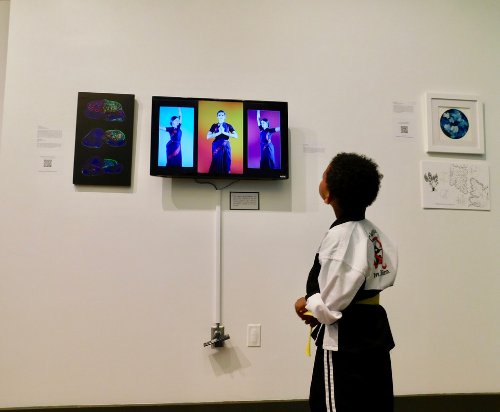 Attendee observing exhibit