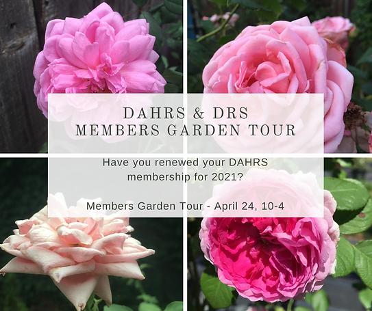 DAHRS DRS Garden Tour (1).png