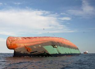 Saiba mais sobre o derramamento de óleo  na Baía Babitonga em 2008