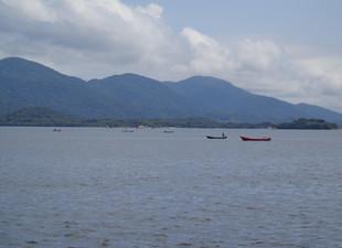Grupo Pró-Babitonga repudia a desativação do Ibama em Joinville
