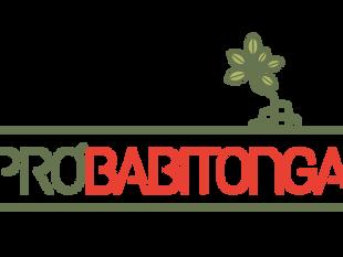 Grupo Pró-Babitonga realiza segunda assembleia remota